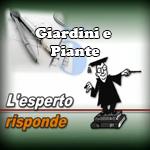 Video-Giardino-e-PIante